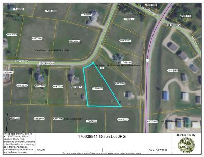 Audubon Residential Lots & Land For Sale: Lakeview Lane