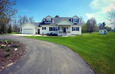 Perham Single Family Home For Sale: 46850 Wintergreen Rd.