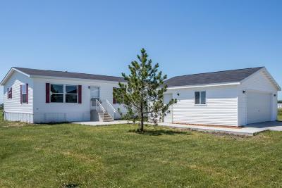 Perham Single Family Home For Sale: 702 4th Street SE