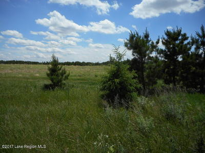 Perham Residential Lots & Land For Sale: Turtle Bay Development, 425th Avenue