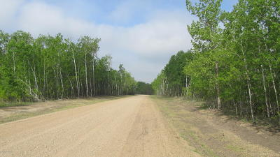 Hawley Residential Lots & Land For Sale: Tbd Lot 1 12th Avenue S