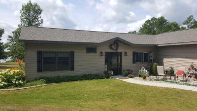 Frazee Single Family Home For Sale: 17890 Co Hwy 38