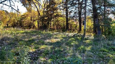 Detroit Lakes Residential Lots & Land For Sale: 28201 State Hwy. 34