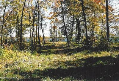 Audubon Residential Lots & Land For Sale: 11999 Lake Maud Tract C
