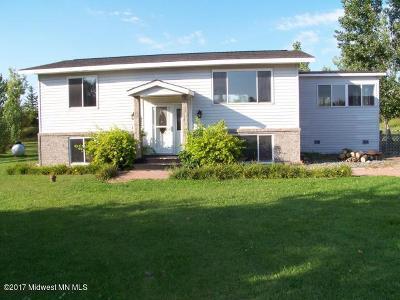 Detroit Lakes Single Family Home For Sale: 298 Long Lake Lane