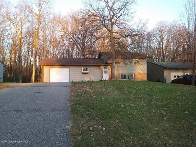 Detroit Lakes Single Family Home For Sale: 1537 E Shore Drive