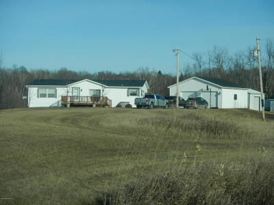 Frazee Single Family Home For Sale: 44300 Co Rd 151