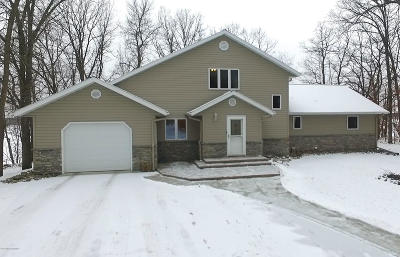 Perham Single Family Home For Sale: 43453 Co Hwy 53