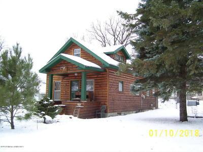 Detroit Lakes Single Family Home For Sale: 1150 Woodrow Avenue