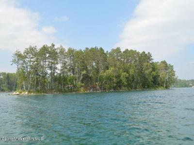 Single Family Home For Sale: Island Bad Medicine Lake