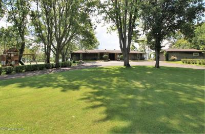 Detroit Lakes Single Family Home For Sale: 22266 Linden Park Road