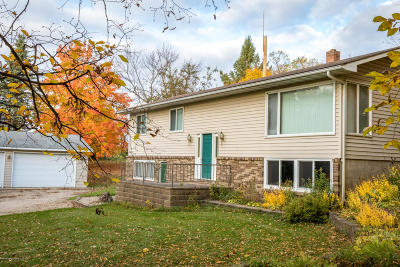 Detroit Lakes Single Family Home For Sale: 15377 E Munson Lake Drive