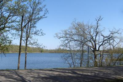 Frazee Residential Lots & Land For Sale: 11054 Eagle Lake Road