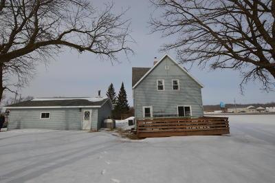 Frazee Single Family Home For Sale: 30030 130 Street