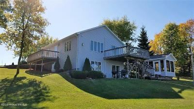 Single Family Home For Sale: 34679 Sybil Lake Trail