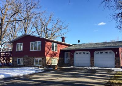 Detroit Lakes Single Family Home For Sale: 21259 Us-59