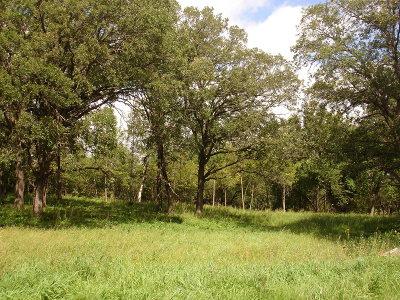 Residential Lots & Land For Sale: 3812 Eagle Ridge Road