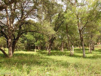 Residential Lots & Land For Sale: 3826 Eagle Ridge Road