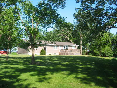 Detroit Lakes Single Family Home For Sale: 21467 Dovre Road