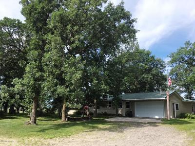 Ottertail Single Family Home For Sale: 34853 Mn-78