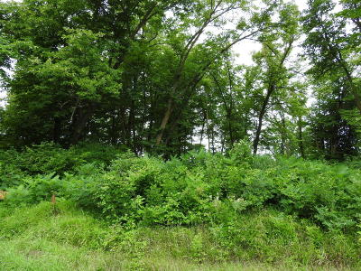 Ottertail Residential Lots & Land For Sale: Lots 39&40 Co Hwy 1