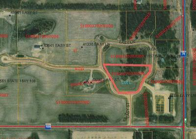 Perham Residential Lots & Land For Sale: Lot L Easy Lane
