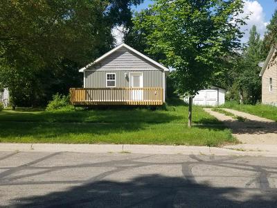 Mahnomen Single Family Home For Sale: 407 W Monroe Avenue