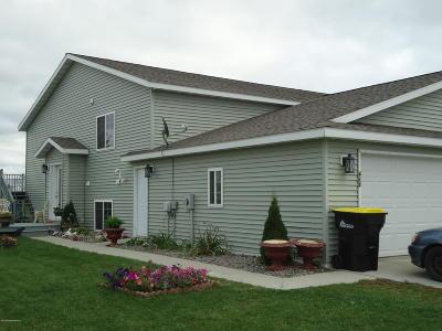 Perham Single Family Home For Sale: 412 NE 7th Avenue