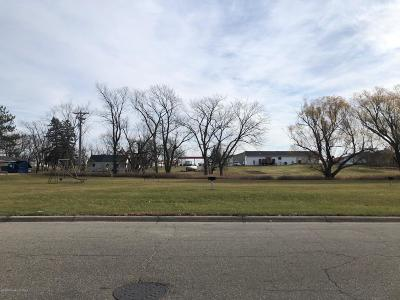 Detroit Lakes Residential Lots & Land For Sale: 203 Barbara Avenue