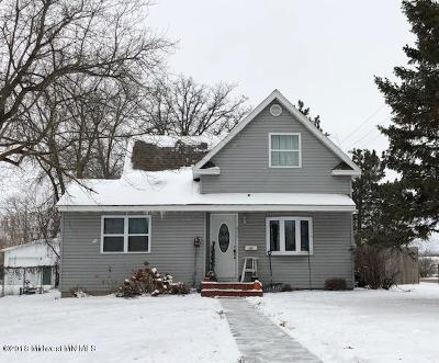 Detroit Lakes Single Family Home For Sale: 600 West Avenue