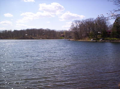 Residential Lots & Land For Sale: Tbd 2 W Toad Lake Drive