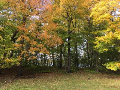 Residential Lots & Land For Sale: Chippewa Trail