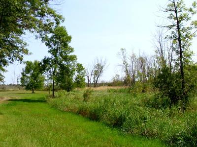 Ottertail Residential Lots & Land For Sale: 42000 Long Lake Lane
