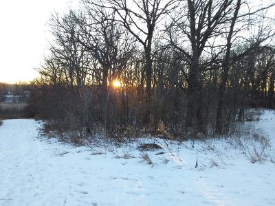 Detroit Lakes Residential Lots & Land For Sale: 15278 W Munson Lane