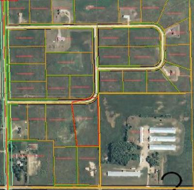 Perham Residential Lots & Land For Sale: Lot 29 427th Street