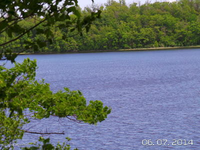 Residential Lots & Land For Sale: 51xxx Curly Drive