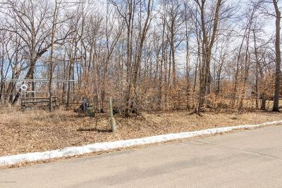 Perham Residential Lots & Land For Sale: 49xxx 428th Street