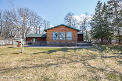 Frazee Single Family Home For Sale: 43088 Co Hwy 56
