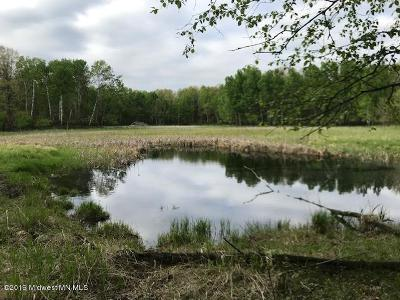 Perham Residential Lots & Land For Sale: 50999 480th Avenue