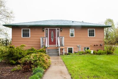 Dent Single Family Home For Sale: 32412 355th Street