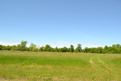 Dent Residential Lots & Land For Sale: Parcel A Mn Hwy 108