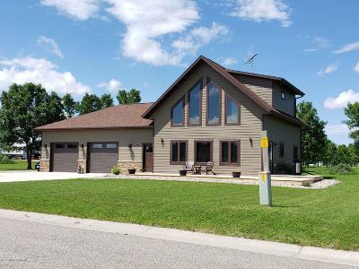 Audubon Single Family Home For Sale: 110 Partridge Street