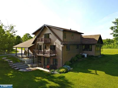 Itasca County Single Family Home For Sale: 117 Eagle Drive