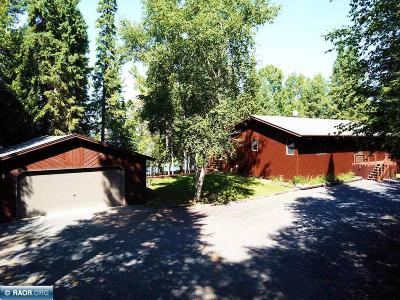 International Falls MN Single Family Home For Sale: $399,000