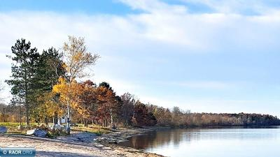 Deer River MN Residential Lots & Land For Sale: $325,000