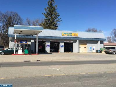Koochiching County Commercial For Sale: 300 8th St