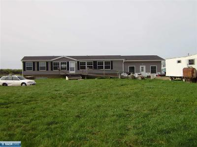 Itasca County Single Family Home For Sale: 24979 County Road 328
