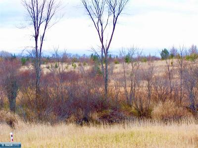 Koochiching County Residential Lots & Land For Sale: Hwy 53 S Of Ray