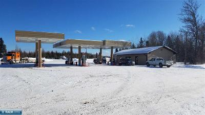 Koochiching County Commercial For Sale: 3467 Highway 53