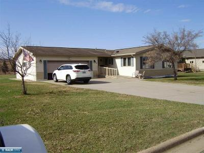 Itasca County Single Family Home For Sale: 503 W Howard Avenue